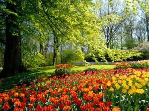 paisajes-primavera-x-fondos-de-pantalla-805517